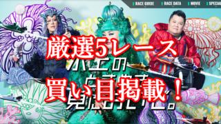 「競艇予想・常滑」SG第24回オーシャンカップ-初日-買い目掲載!